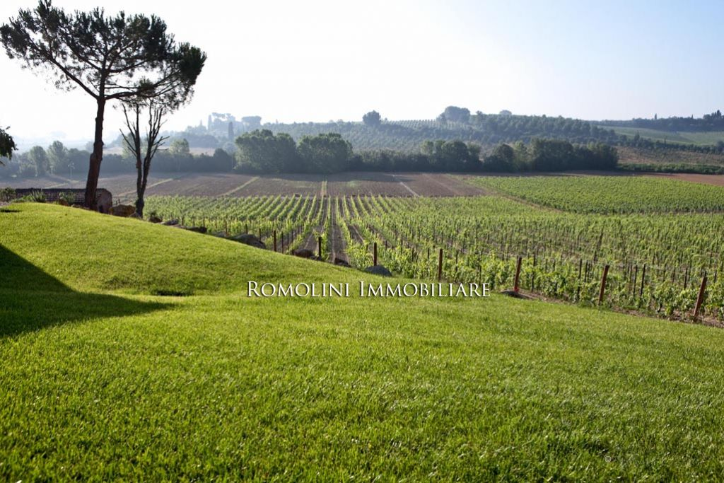 TUSCANY: VINEYARDS FOR SALE SIENA, WINE ESTATE WITH LUXURY VILLA